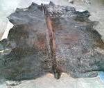 Balai Karantina musnahkan sembilan ton kulit sapi