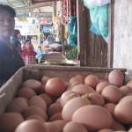HARGA KEBUTUHAN : Harga Telur Ayam di Purwokerto Capai Rp20.000/Kg
