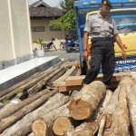 Polres Grobogan sita 108 batang kayu jati tanpa pemilik