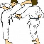 Ilustrasi (taekwondo-network.com)
