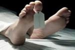 PEMBUNUH SEKELUARGA di BALI Pasutri Sopir-PRT, Sakit Hati 2 Bulan Tidak Digaji