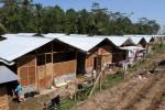 RELOKASI WARGA Korban Merapi, Pemkab Siapkan 3 Lokasi