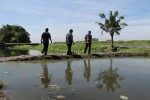 Budidaya udang galah di Desa Cepokosawit, Kecamatan Sawit, Kabupaten Boyolali. Foto diambil beberapa waktu lalu. ( Farida Trisnaningtyas/JIBI/SOLOPOS)