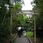 WISATA: Surga di Hulu Sungai Air Hitam