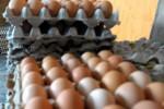 HARGA KEBUTUHAN POKOK : Beras di Kota Madiun hingga Rp11.500/Kg, Telur Ayam Rp24.000/Kg