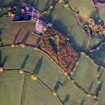 Demi Almarhum Istri, Pria Inggris Bikin Lukisan Cinta dari 6.000 Pohon