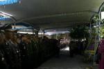 Upacara militer pelepasan  jenazah korban penembakan di pos polisi Plasa Singosaren, Serengan, Solo, Bripka Dwi Data Subekti, di Perum Ngringo Indah, Jaten, Karanganyar, Jumat (31/8/2012) siang.