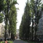 Salah satu sudut Kota Kiev, Ukraina (JIBI/Harian Jogja/Bayu Widagdo)