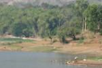 SEDIMENTASI: Petani Desak Pemerintah Keruk Waduk Krisak