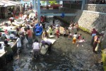 Sejumlah perempuan yang datang dari beberapa kecamatan di Boyolali sedang mencuci pakaian dan tikar di kawasan Umbul Tlatar, Kebonbimo, Boyolali. Menipisnya persediaan air di rumah membuat mereka rutin mengunjungi kawasan wisata air tersebut untuk mencuci. (JIBI/SOLOPOS/Dian Erika Nugraheny)