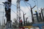 Perawatan jaringan listrik PLN (JIBI/SOLOPOS/Mufid Aryono)