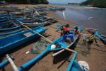 PENANGKAPAN IKAN ILEGAL : Polisi Amankan Nelayan Cilacap Penangkap Ikan yang Dilindungi