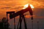 BP MIGAS BUBAR: Pemerintah Yakin UU Migas Tak Perlu Banyak Direvisi