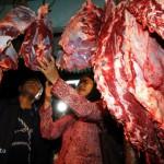 IDULADHA 2017 : Naiknya Harga Hewan Ternak Tak Tulari Harga Daging Sapi