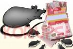 KP2KKN: Kasus Korupsi di Jateng Naik 100%