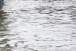 Ilustrasi banjir (JIBI/Bisnis/Dok.)