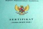 Ilustrasi sertifkat