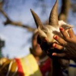 HUKUM SANTET: Delik Santet Dinilai Bisa Timbulkan Fitnah