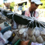 HARGA BAWANG : Di Jogja Harga Cabai dan Bawang Turun