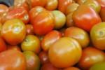 Kolesterol Darah Tinggi? Perbanyak Konsumsi Tomat dan Kedelai