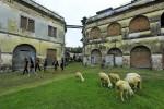 WISATA NGAWI : Punya Pilar Asli 1845, Benteng Pendem Diusulkan Jadi Cagar Budaya Nasional