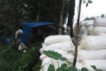 KECELAKAAN BOYOLALI : Tak Kuat Nanjak, Truk Pengangkut 9 Ton Kapas Terguling