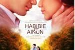 FILM HABIBIE AINUN : Sedot 4 Juta Penonton Habibie Ainun Kalahkan Iron Man Dan Fast Six