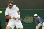 WIMBLEDON : David Ferrer Melaju ke Perempat Final