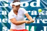 FED CUP 2016 : Indonesia Target Promosi