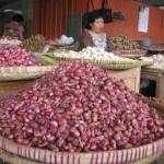Foto Pedagang Bawang Merah di Pasar Beringharjo (JIBI/Harian Jogja/Holy Kartika )