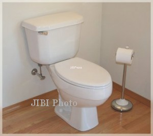 JIBI/Harian Jogja/Istimewa Ilustrasi Toilet bloguin.com
