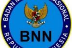 Logo BNN (Istimewa)
