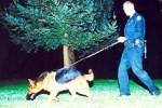 HARI NATAL 2016 : Amankan Salatiga, Polisi Kerahkan Anjing