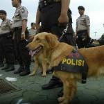 BOM SOLO : Cegah Aksi Terorisme, PT KAI Madiun Libatkan Anjing Pelacak