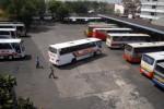 bus-bus arus mudik Lebaran 2013