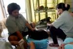 MUDIK LEBARAN 2013 : Hewan Terawat Saat Lebaran Berkat Jasa Penitipan