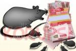 Bank Pelat Merah di Jogja Terjerat Dugaan Korupsi