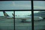 Ilustrasi Singapore Airlines