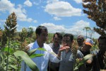 Jokowi Sambangi Wonogiri