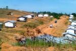 Ilustrasi lahan transmigrasi (Dok/JIBI/Antara)
