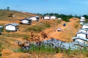 Ilustrasi lahan transmigrasi (JIBI/Antara/Dok.)