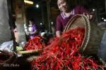 KEBUTUHAN BAHAN PANGAN : Produksi Cabai Besar di Jateng Naik 15,69 Persen