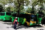 20 bus Trans Jogja dalam kondisi mangkrak (JIBI/Harian Jogja/Gigih M. Hanafi)