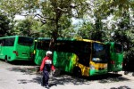 Bus Trans Jogja (JIBI/Harian Jogja/Gigih M. Hanafi)