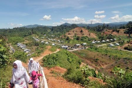 Ilustrasi lahan tujuan transmigrasi (JIBI/Harian Jogja/Antara)