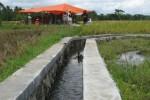 PERTANIAN BANTUL : Ketersediaan Air Irigasi Hanya 79%