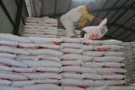 PERTANIAN MADIUN : Pemkab Madiun Yakin Target Produksi Beras 513.000 Ton Tercapai