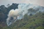 KABUT ASAP : Ribuan Hektare Hutan di Samosir Terbakar