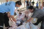 Ilustrasi pemeriksaan hati sapi (JIBI/Harian Jogja/Solopos)