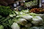 PERTANIAN KARANGANYAR : Harga Sayuran Anjlok, Petani Tawangmangu Menjerit